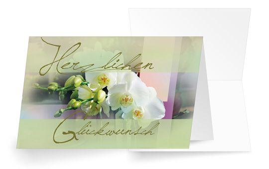Orchideenzauber
