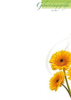 Blüten in Gelb