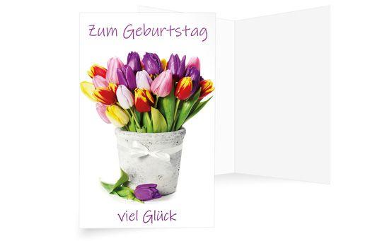 Tulpenpracht