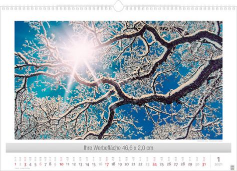 Lichtimpressionen-Januar-Januar