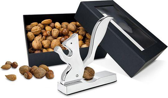 Eichhörnchen-Nüsse